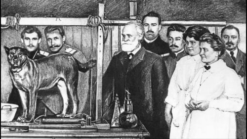 Ivan Pavlov, og en av hundene han brukte i sine eksperimenter.
