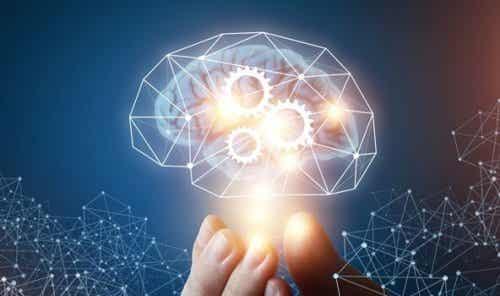 Teorien om machiavellistisk intelligens