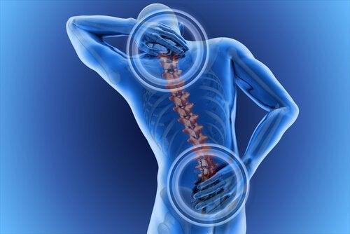 4 øvelser for ryggsmerter og holdningen din