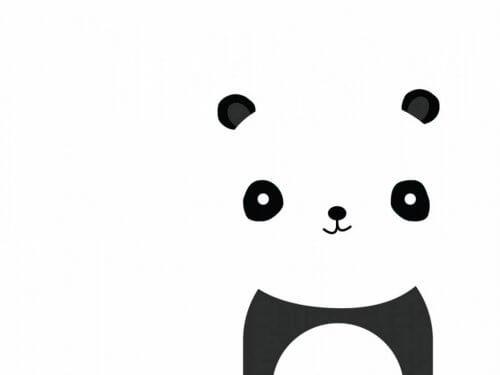 Panda bjørn.
