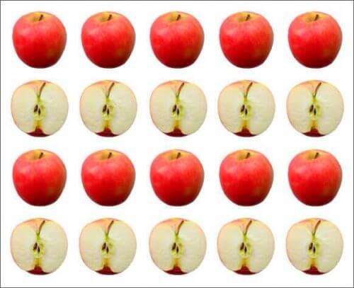 Rader av epler.