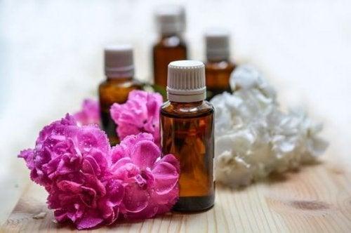 Aromakologi: Hva handler det om?