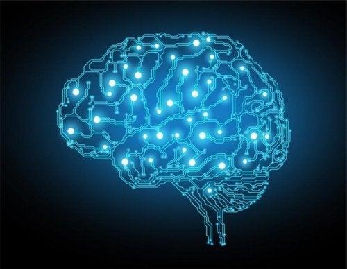 Blå lys i hjernen.