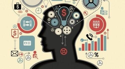 Utøvende funksjoner: Hjernens mentale evner