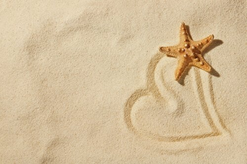 Sand og sjøstjerne.