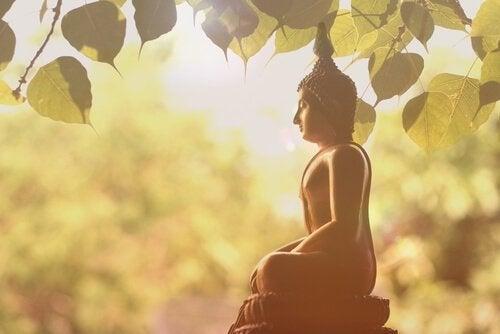 En statue av Buddha under et tre.