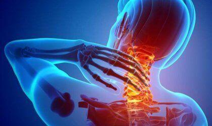 Nociseptorer: Alt om smertereseptorer