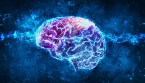 Mangel på søvn på virker hjernen.
