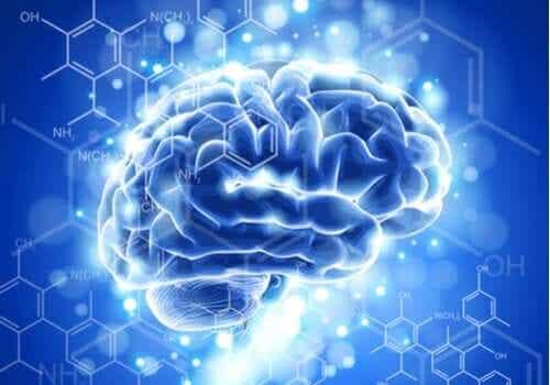 Kjennetegn på og utviklingen av nevroetikk