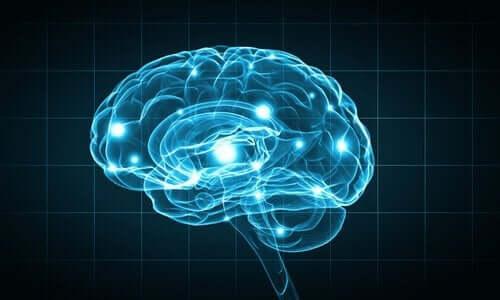 Hjernen opplyst av blå lys