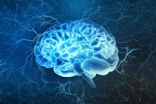Hvem som lider av forventningsangst, kan komme av en forskjell i hjernen.