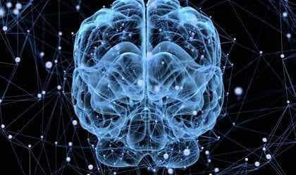 Sover egentlig hjernen vår?