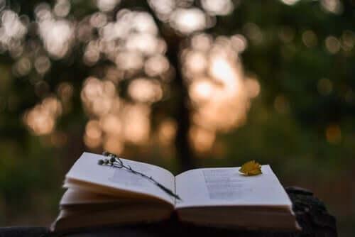 En bok ligger oppslått på midten mot en skogsbakgrunn. Kanskje er Honoré de Balzac forfatteren.