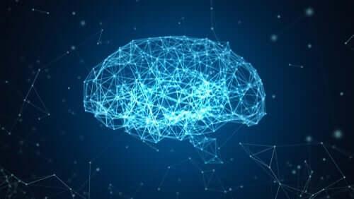 Blue Brain-prosjektet: En rekonstruksjon av hjernen