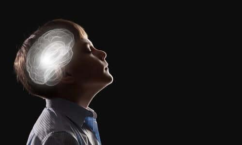 Hva vet vi om nevrobiologien til intuisjon?