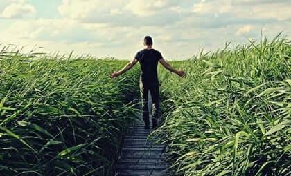 Mann går gjennom en eng