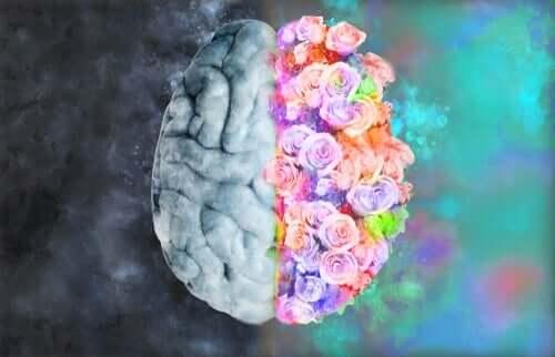 Nevroetikk: Der nevrologi og kunst møtes