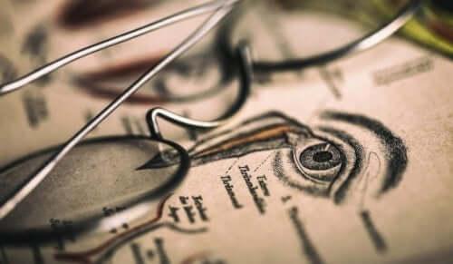 Vitenskapen optografi var veldig populært på 1800-tallet.
