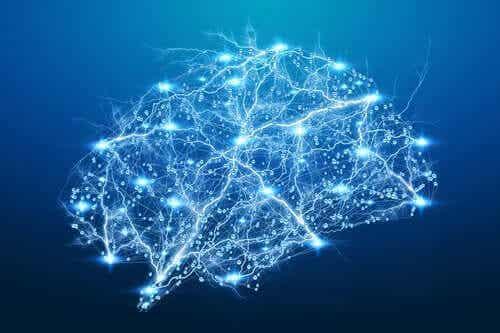 Gjennombrudd i nevropsykologisk rehabilitering