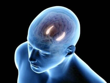 Eksplisitt hukommelse består av semantisk og episodisk hukommelse.