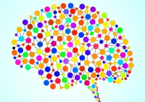 97 tidligere ukjente områder i hjernen