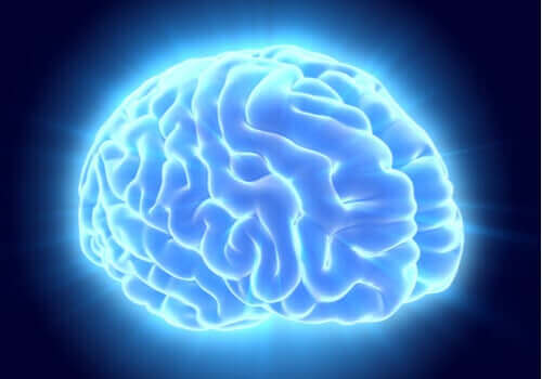 En stor studie viste 97 tidligere ukjente områder i hjernen.