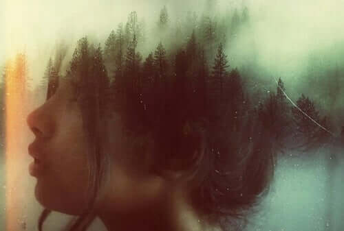 Ansikt og skog