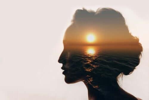 En disposisjon av et kvinnes hode med en solnedgang inni.