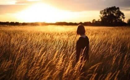 En person som står i et hvetemark.