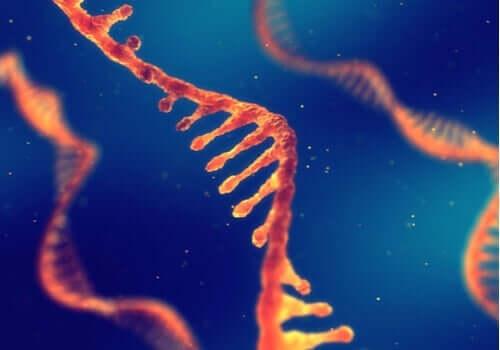 Et digitalt bilde som viser RNA-tråder.