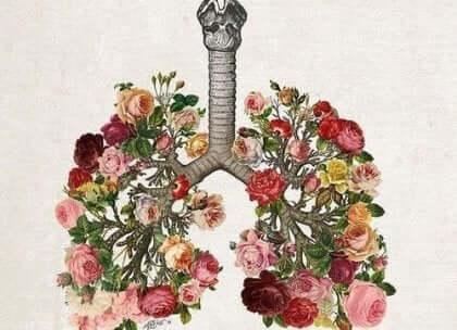 Et bilde av lunger lagd av blomster