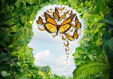 Å forstå psykologi – 7 ulike måter