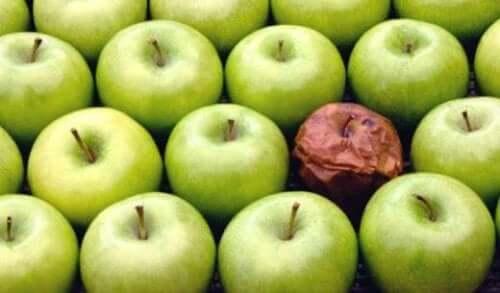 Råtten eple-teorien på arbeidsplassen