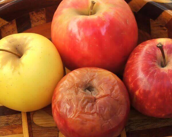 Rotten eple blant andre epler