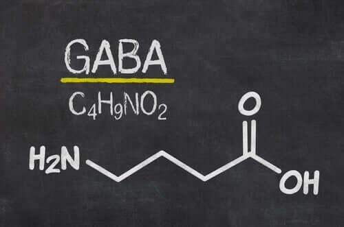 Formelen til GABA-nevrotransmitter på en tavle.