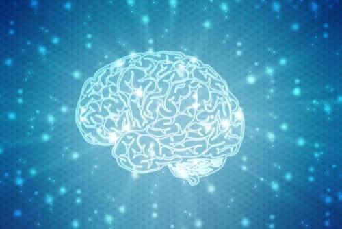 Bilde av en selvlysende hjerne i blå og hvit fargeskala
