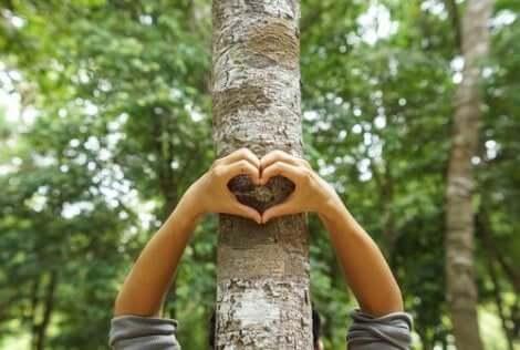 Å forbedre miljøet er en oppgave alle mennesker deler.