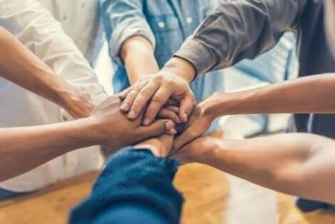 Hva er forholdet mellom gruppesamhold og ytelse?