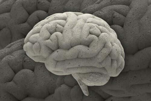Tre fascinerende nevrovitenskapelige tilfeller