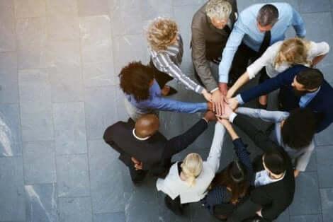 Gruppesamhold kan oppstå fra delte interesser.