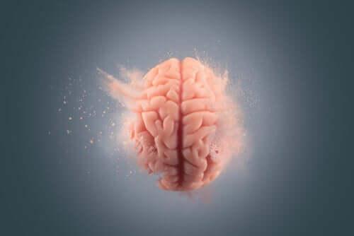 Effektene kokain har på hjernen