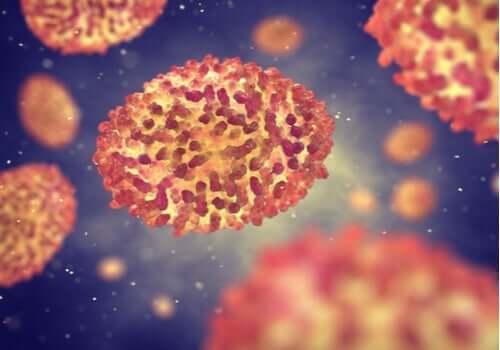 Kan virus kontrollere atferden vår?
