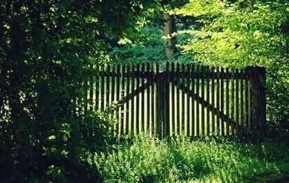 En port til en hage.