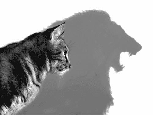 Rathus' selvsikkerhetsskjema