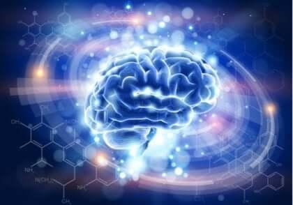 Opplyst blå hjerne
