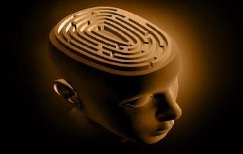 Hjernen som en labyrint.