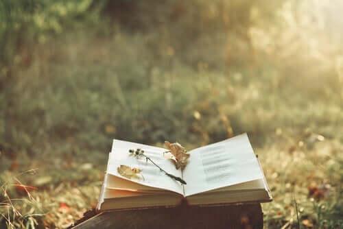En åpen bok som ligger ute