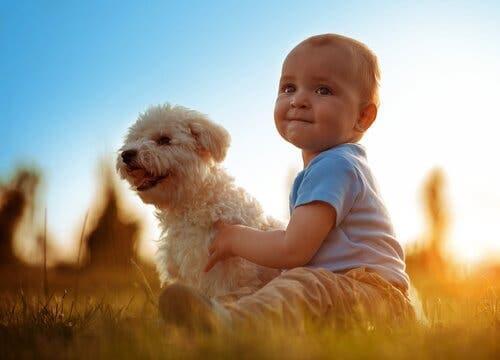 En liten gutt med hunden sin.