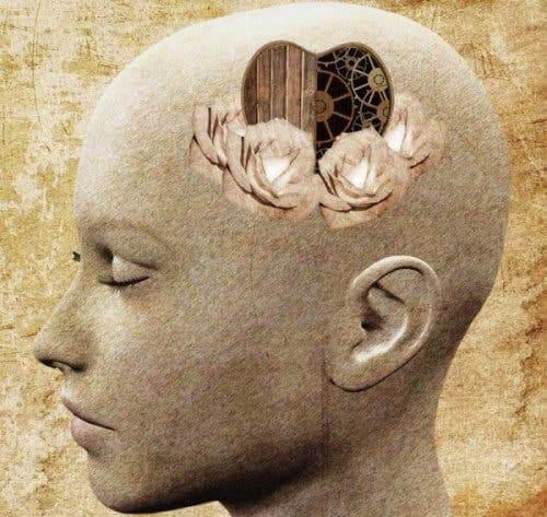 Et menneskelig hode med hjertesymbol inni.