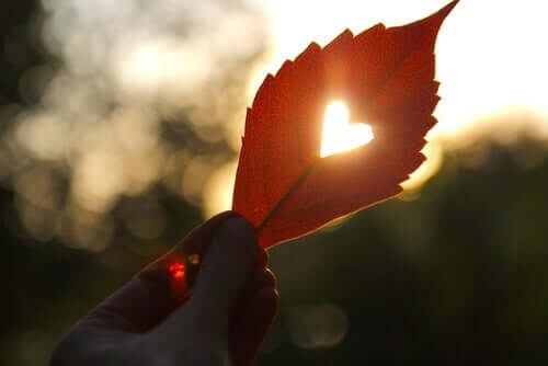Et høstblad med hjerte.